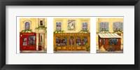 Framed Paris Triptych B