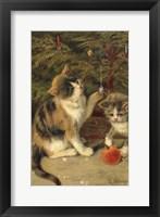 Framed Kitty Cats