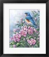 Framed Blue Bird And Wild Roses