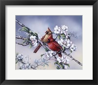 Framed Spring Cardinals