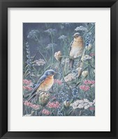 Framed Bluebird And Wildflowers