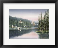 Framed Swans At Sunrise