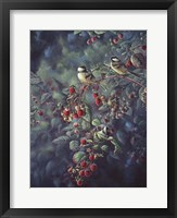 Framed Red Raspberries And Chickadees