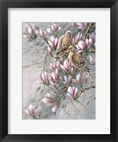 Framed Doves And Magnoilas