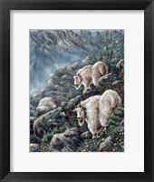 Framed Mountain Voyager