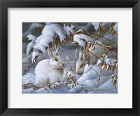 Framed Winter Hares