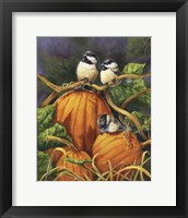 Framed Chickadees And Pumpkins