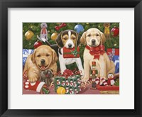 Framed Which One's Mine - Xmas Puppies