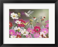 Framed Cosmos and Hummingbirds