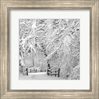 Framed Winter Wonderland