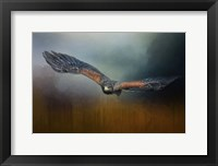 Framed Flight Of The Harris Hawk