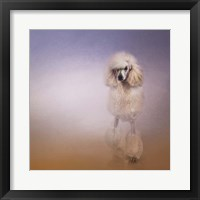 Framed On The Way To The Salon Standard Poodle