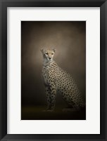 Framed Elegant Cheetah