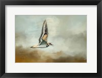Framed Flight Of The Killdeer