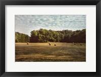 Framed Harvest Time