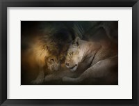 Framed Lion Love
