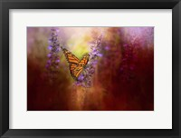 Framed Autumn Monarch