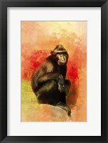 Framed Colorful Expressions Black Monkey