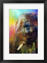 Framed Colorful Expressions Elephant