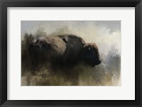 Framed Abstract American Bison