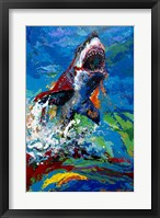 Framed Lawyer Breeching Great White Shark