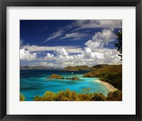 Framed Trunk Bay