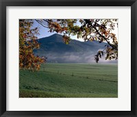 Framed Cades Cove