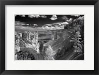 Framed Bryce