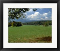 Framed Cades Cove II