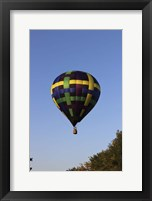 Framed Air Balloon