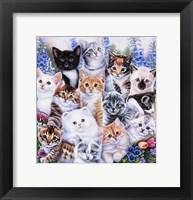 Framed Kitten Collage