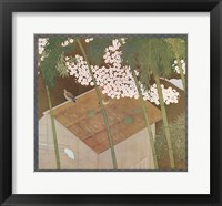 Framed Cherry Blossoms & Pigeons