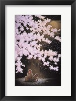 Framed Falling Cherry Blossoms
