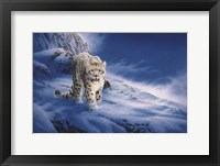 Framed In Snowstorm