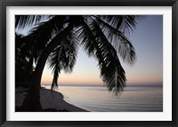 Framed Palm Tree Sunset