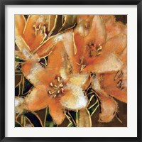Framed Apricot Dream I
