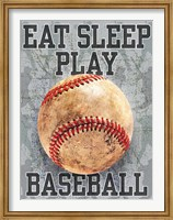 Framed Eat Sleep Play Baseball