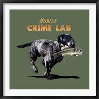 Framed Mobile Crime Lab