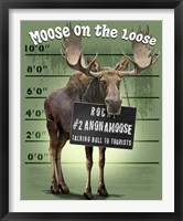 Framed Moose on the Loose