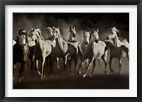 Framed Dream Horses