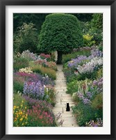 Framed Garden Cat