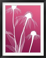 Framed Floral 5