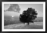 Framed Spitler Knoll Overlook