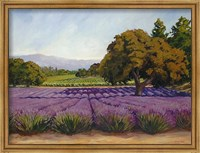 Framed Lavender Fields