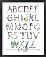 Framed Alphabat