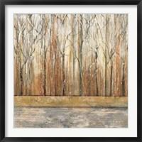 Framed Telluride II
