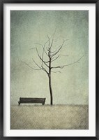 Framed Cherry Tree - Winter