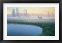 Framed Yellowstone Mist
