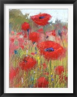 Framed In the Poppy Field