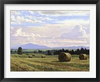 Framed Fresh Cut Hay